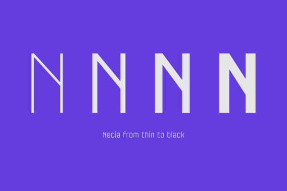 Print on Demand: Necia Family Sans Serif Font By Graviton Font Foundry - Image 4