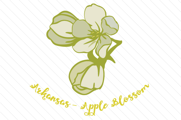 State Flower: Arkansas Apple Blossom State Flowers Craft Cut File By Creative Fabrica Crafts