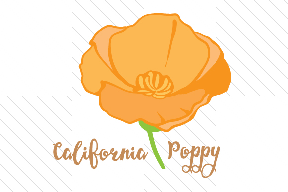 State Flower: California Poppy State Flowers Craft Cut File By Creative Fabrica Crafts