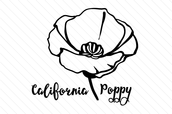 Download Free State Flower California Poppy Svg Cut File By Creative Fabrica for Cricut Explore, Silhouette and other cutting machines.