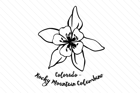 rocky mountain columbine coloring pages - photo#12