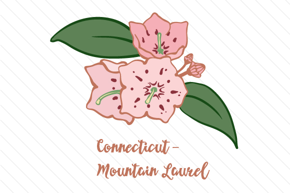 State Flower: Connecticut Mountain Laurel State Flowers Craft Cut File By Creative Fabrica Crafts