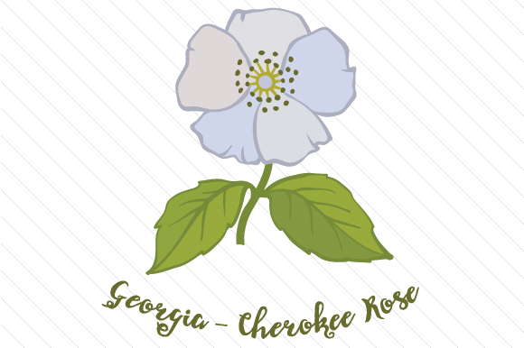 Download Free State Flower Georgia Cherokee Rose Svg Cut File By Creative for Cricut Explore, Silhouette and other cutting machines.