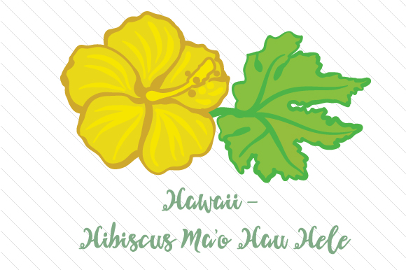 Download Free State Flower Hawaii Hibiscus Ma O Hau Hele Svg Cut File By Creative Fabrica Crafts Creative Fabrica for Cricut Explore, Silhouette and other cutting machines.