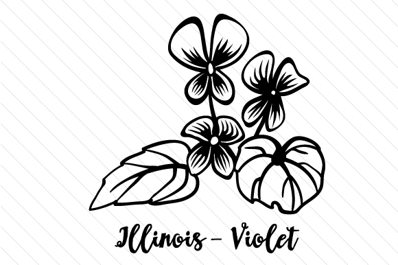 Download Free State Flower Illinois Violet Svg Cut File By Creative Fabrica for Cricut Explore, Silhouette and other cutting machines.