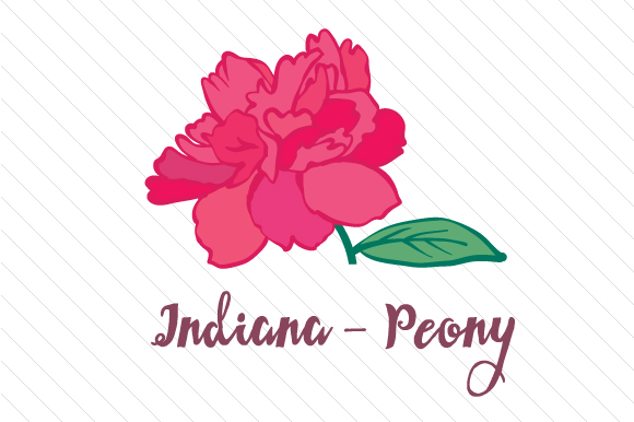 State Flower: Indiana Peony State Flowers Craft Cut File By Creative Fabrica Crafts