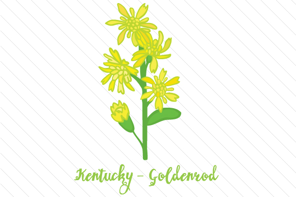 State Flower: Kentucky Goldenrod State Flowers Craft Cut File By Creative Fabrica Crafts