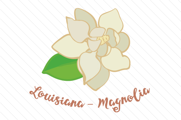State Flower: Louisiana Magnolia State Flowers Craft Cut File By Creative Fabrica Crafts