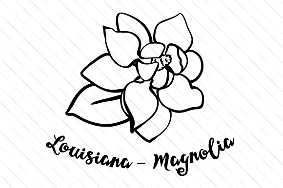Download Free State Flower Louisiana Magnolia Svg Cut File By Creative for Cricut Explore, Silhouette and other cutting machines.