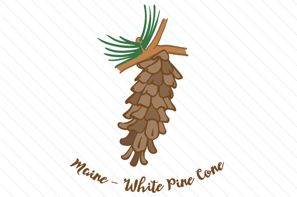 State Flower: Maine White Pine Cone State Flowers Craft Cut File By Creative Fabrica Crafts