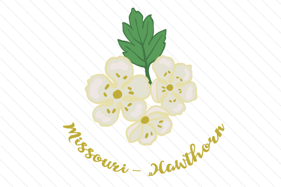 State Flower: Missouri Hawthorn State Flowers Craft Cut File By Creative Fabrica Crafts