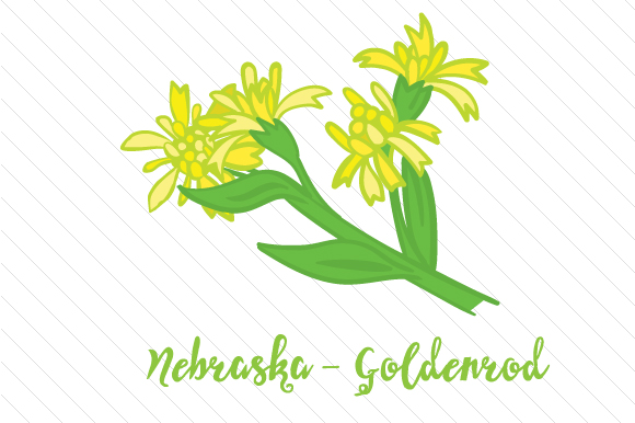 State Flower: Nebraska Goldenrod State Flowers Craft Cut File By Creative Fabrica Crafts