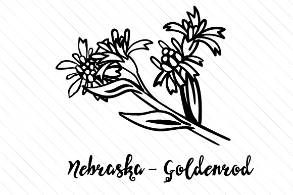 Download Free State Flower Nebraska Goldenrod Svg Cut File By Creative for Cricut Explore, Silhouette and other cutting machines.