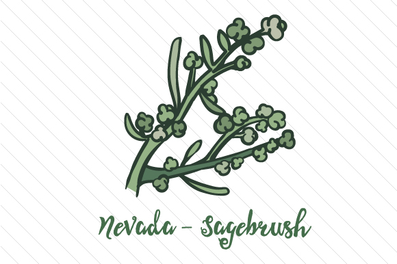 State Flower: Nevada Sagebrush State Flowers Craft Cut File By Creative Fabrica Crafts