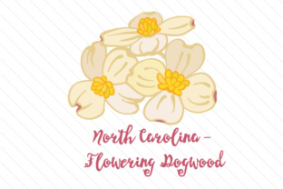 North-carolina-flowering-dogwood