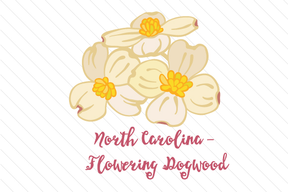 State Flower: North Carolina Flowering Dogwood State Flowers Craft Cut File By Creative Fabrica Crafts