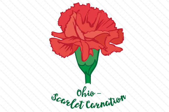 State Flower: Ohio Scarlet Carnation State Flowers Craft Cut File By Creative Fabrica Crafts