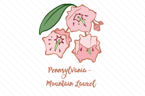 Download Free State Flower Pennsylvania Mountain Laurel Svg Cut File By for Cricut Explore, Silhouette and other cutting machines.