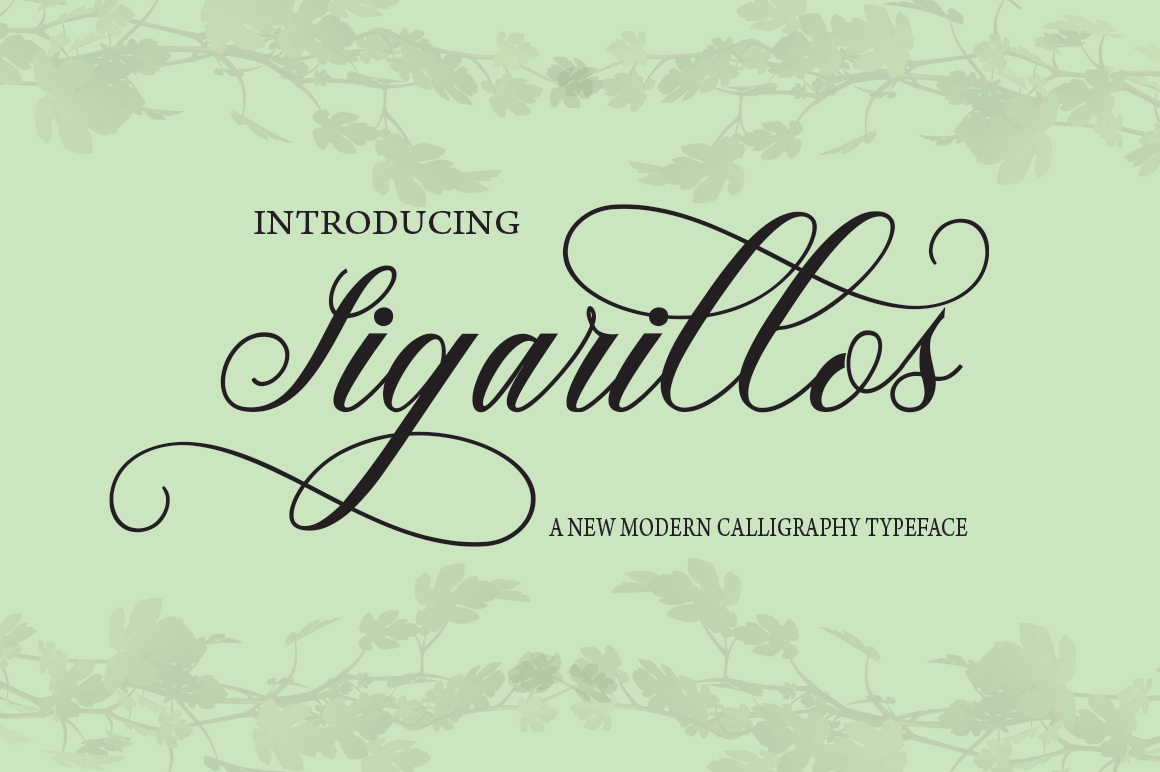 Print on Demand: Sigarillos Script & Handwritten Font By Danti