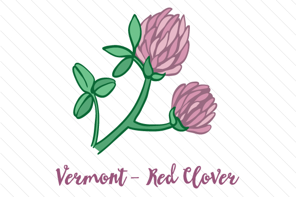 State Flower: Vermont Red Clover State Flowers Craft Cut File By Creative Fabrica Crafts