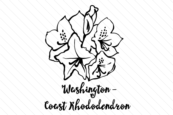 State Flower: Washington Coast Rhododendron State Flowers Craft Cut File By Creative Fabrica Crafts - Image 2