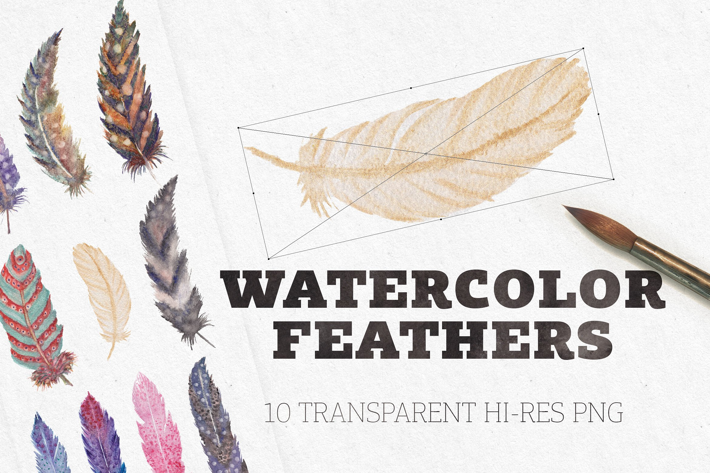 Watercolor Feathers Graphic By Blessed Print