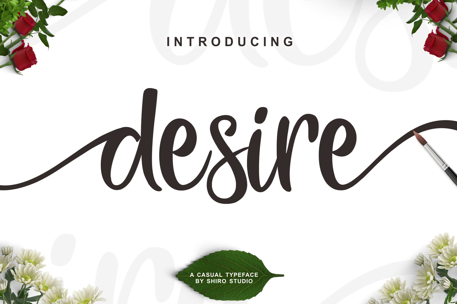 Print on Demand: Desire Script Script & Handwritten Font By Lettersiro Co.