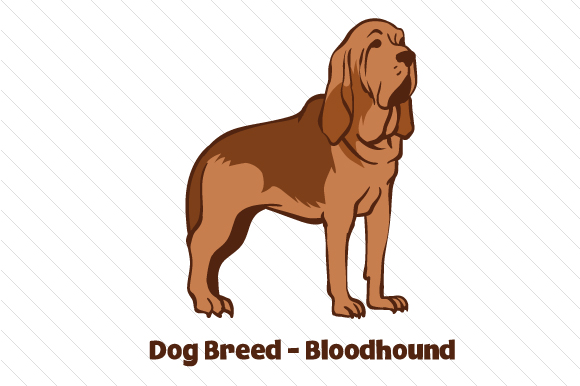 Download Free Dog Breed Bloodhound Svg Cut File By Creative Fabrica Crafts for Cricut Explore, Silhouette and other cutting machines.