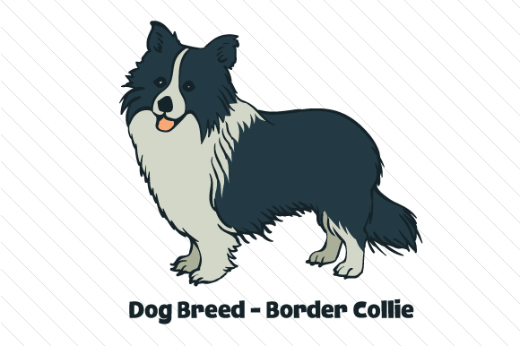 Dog Breed - Border Collie Dogs Craft Cut File By Creative Fabrica Crafts