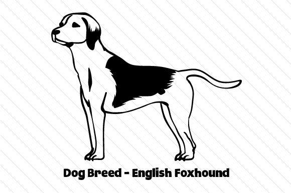 Download Free Dog Breed English Foxhound Svg Cut File By Creative Fabrica for Cricut Explore, Silhouette and other cutting machines.