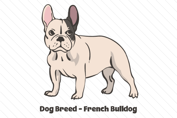 Download Free Dog Breed French Bulldog Svg Cut File By Creative Fabrica for Cricut Explore, Silhouette and other cutting machines.