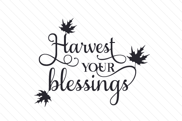 Download Free Harvest Your Blessings Svg Cut File By Creative Fabrica Crafts for Cricut Explore, Silhouette and other cutting machines.