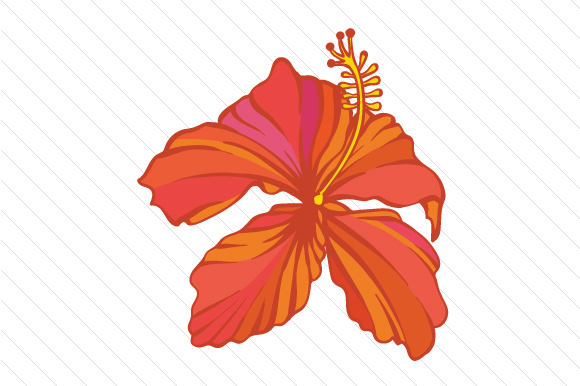 Download Free Hibiscus Flower Svg Cut File By Creative Fabrica Crafts for Cricut Explore, Silhouette and other cutting machines.