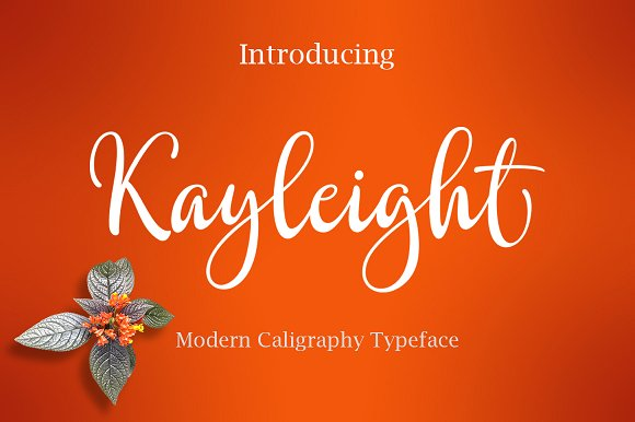 Print on Demand: Kayleight Script & Handwritten Font By Byuly Ayika - Image 1