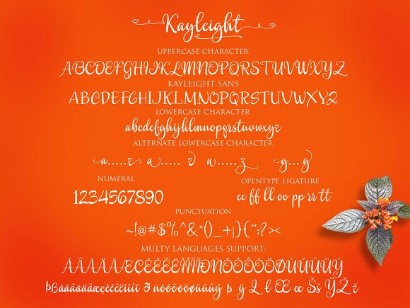 Print on Demand: Kayleight Script & Handwritten Font By Byuly Ayika - Image 5