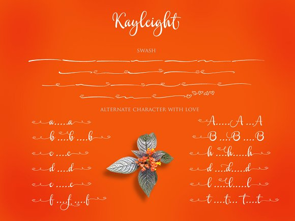 Print on Demand: Kayleight Script & Handwritten Font By Byuly Ayika - Image 4