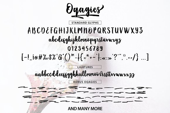 Print on Demand: Oqagies Script & Handwritten Font By barland - Image 7