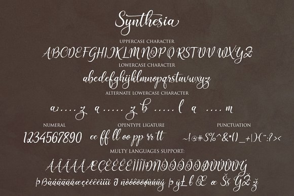 Print on Demand: Synthesia Script & Handwritten Font By Byuly Ayika - Image 2