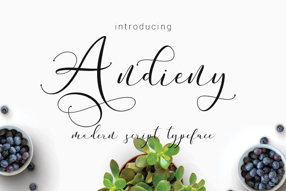 Print on Demand: Andieny Script & Handwritten Font By Thirtypath