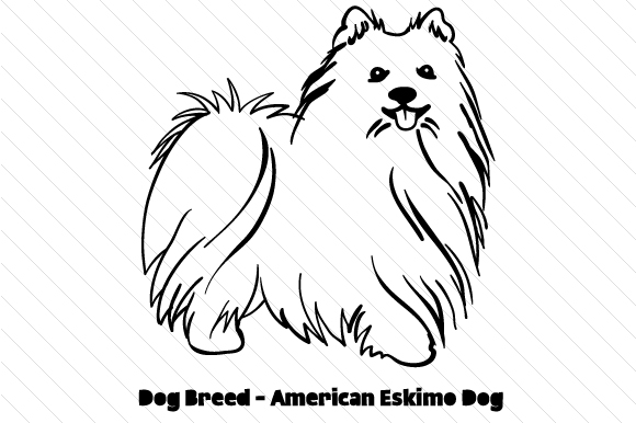 Download Free Dog Breed American Eskimo Dog Svg Cut File By Creative Fabrica for Cricut Explore, Silhouette and other cutting machines.