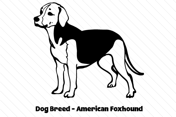 Download Free Dog Breed American Foxhound Svg Cut File By Creative Fabrica for Cricut Explore, Silhouette and other cutting machines.
