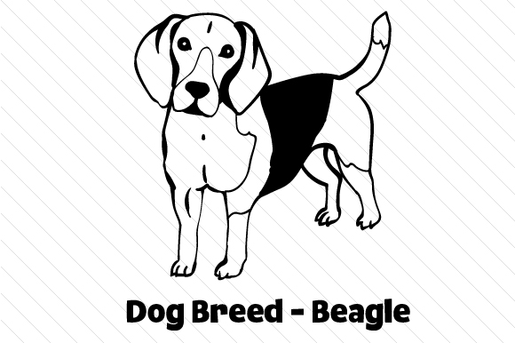 Download Free Dog Breed Beagle Svg Cut File By Creative Fabrica Crafts for Cricut Explore, Silhouette and other cutting machines.