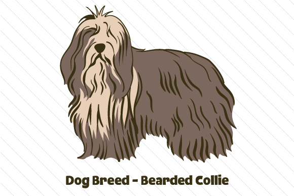 Dog Breed - Bearded Collie Craft Design By Creative Fabrica Crafts