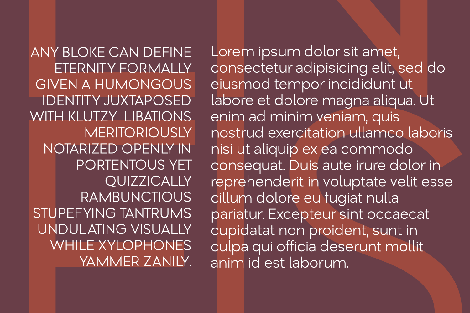 Print on Demand: Lenis Sans Serif Font By Creative Fabrica Fonts - Image 4