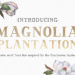 Magnolia Plantation by AutumnLanePaperie
