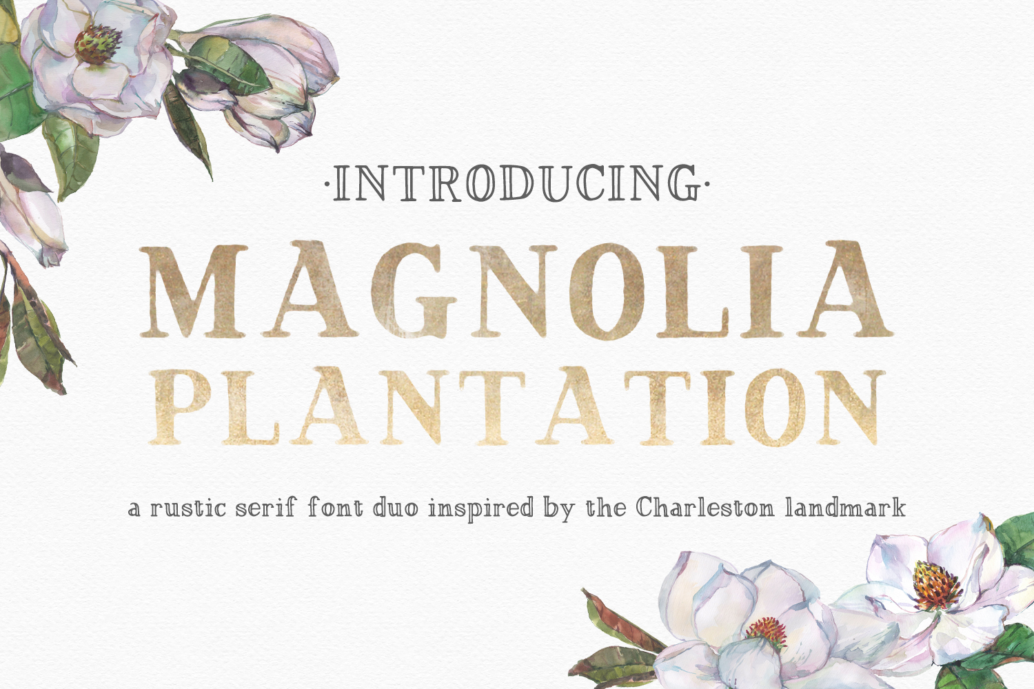 Print on Demand: Magnolia Plantation Serif Font By BeckMcCormick