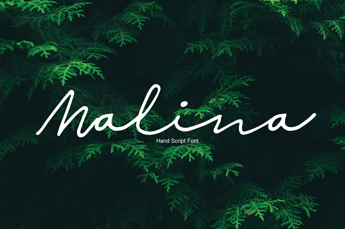 Print on Demand: Malina Script & Handwritten Font By PaulaType