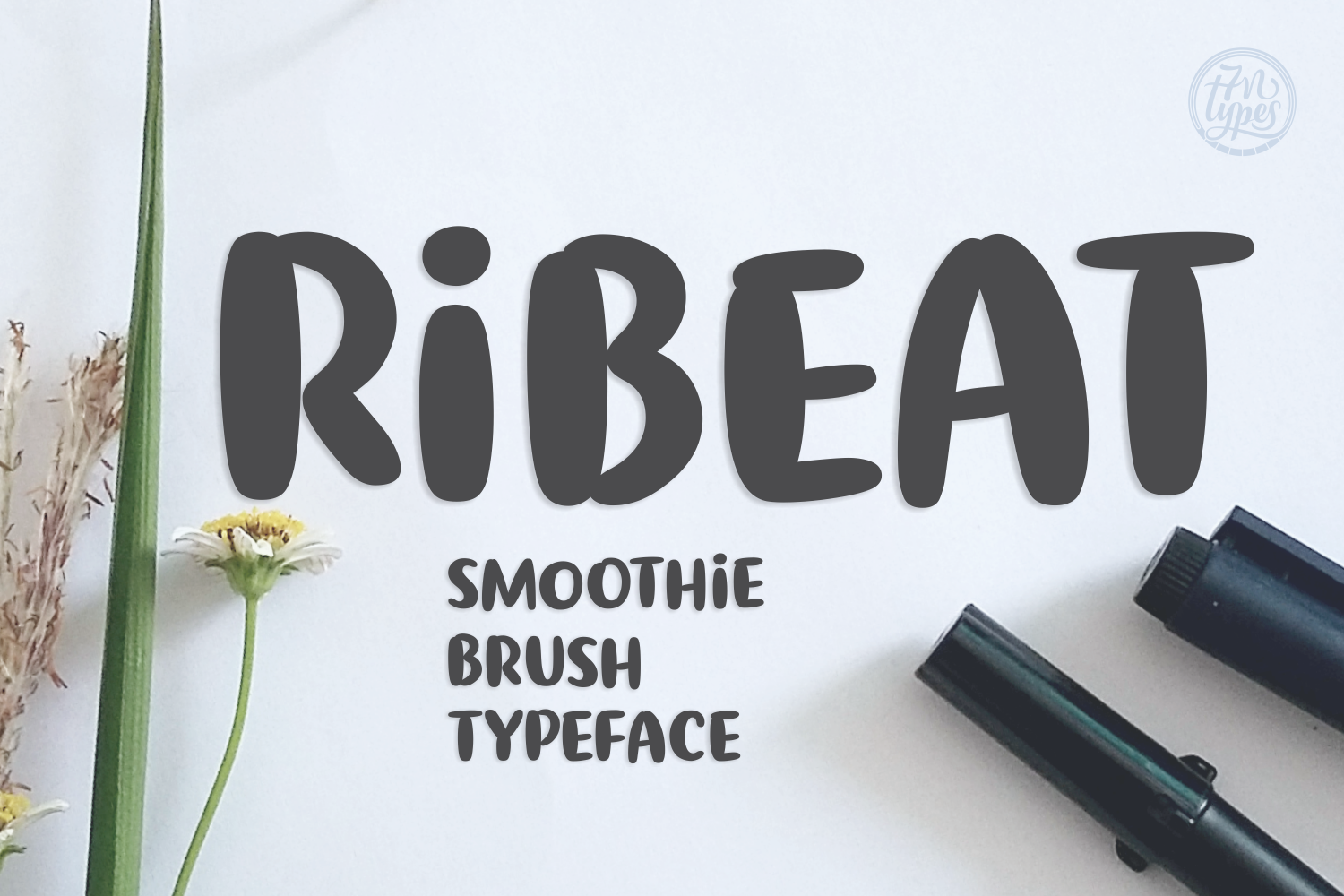 Ribeat Script & Handwritten Font By Situjuh