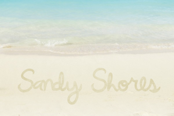 Sandy Shores Script & Handwritten Font By Marlee Pagels