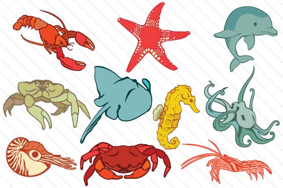 Set with 10 Beautiful Sea Creatures Designs & Drawings Craft Cut File By Creative Fabrica Crafts